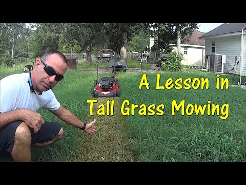 Pt 1 How To Cut Tall Grass with Cheap Lawn Mower - Mowing Tall Overgrown Grass