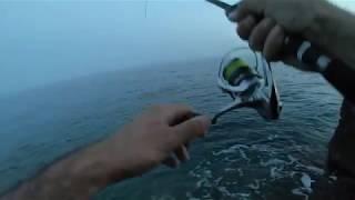 Duo Tide Minnow Slim 200F 27g Rainbow AMI Decoy Fortified Lip Spinning Barracuda