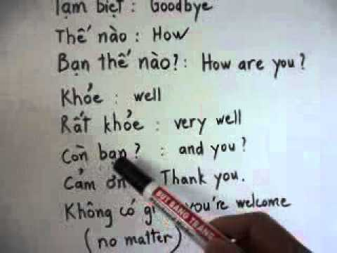 Learn Vietnamese 6 (How are you, thank you...)