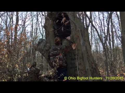 Bigfoot Hunting 11/20/2015-Finding Weird Things