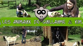 LES ANIMAUX DE GUILLAUME ET KIM | GOAT SIMULATOR EN VRAI !