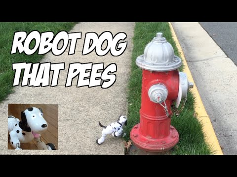 Remote Control Toy Dog That Poops
