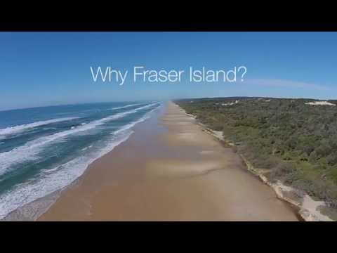 Why Fraser Island - Kingfisher Bay Resort Fraser Island