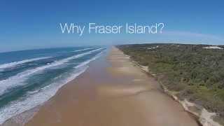 Why Fraser Island - Kingfisher Bay Resort Fraser Island