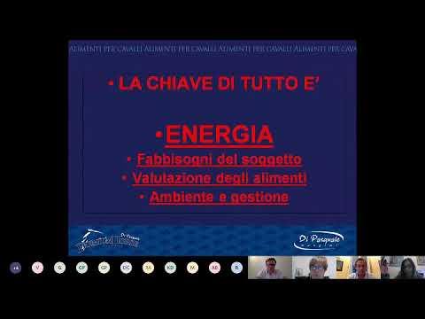 SECONDA VIDEO CHAT LIVE FISE SICILIA DELL'11 MAGGIO ORE 19 30 SU ALIMENTAZIONE DEL CAVALLO SPORTIVO