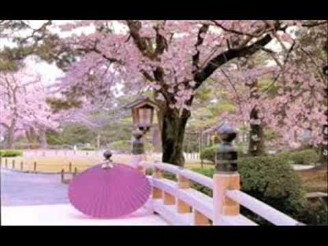 Afro-Asian (Culture/Traditions,Values and Tourist Spots of Japan)