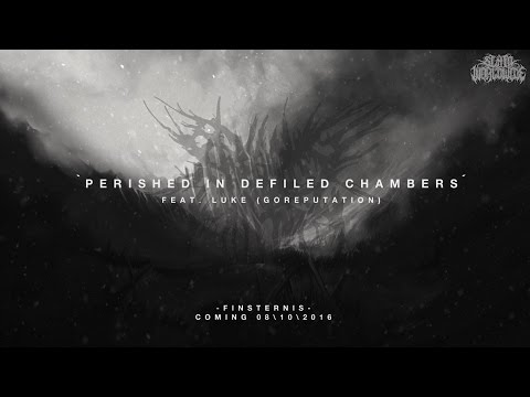 BEGGING FOR INCEST - PERISHED IN DEFILED CHAMBERS (FT. LUKEN GOREPUTATION) [SINGLE] (2016) SW EXCL