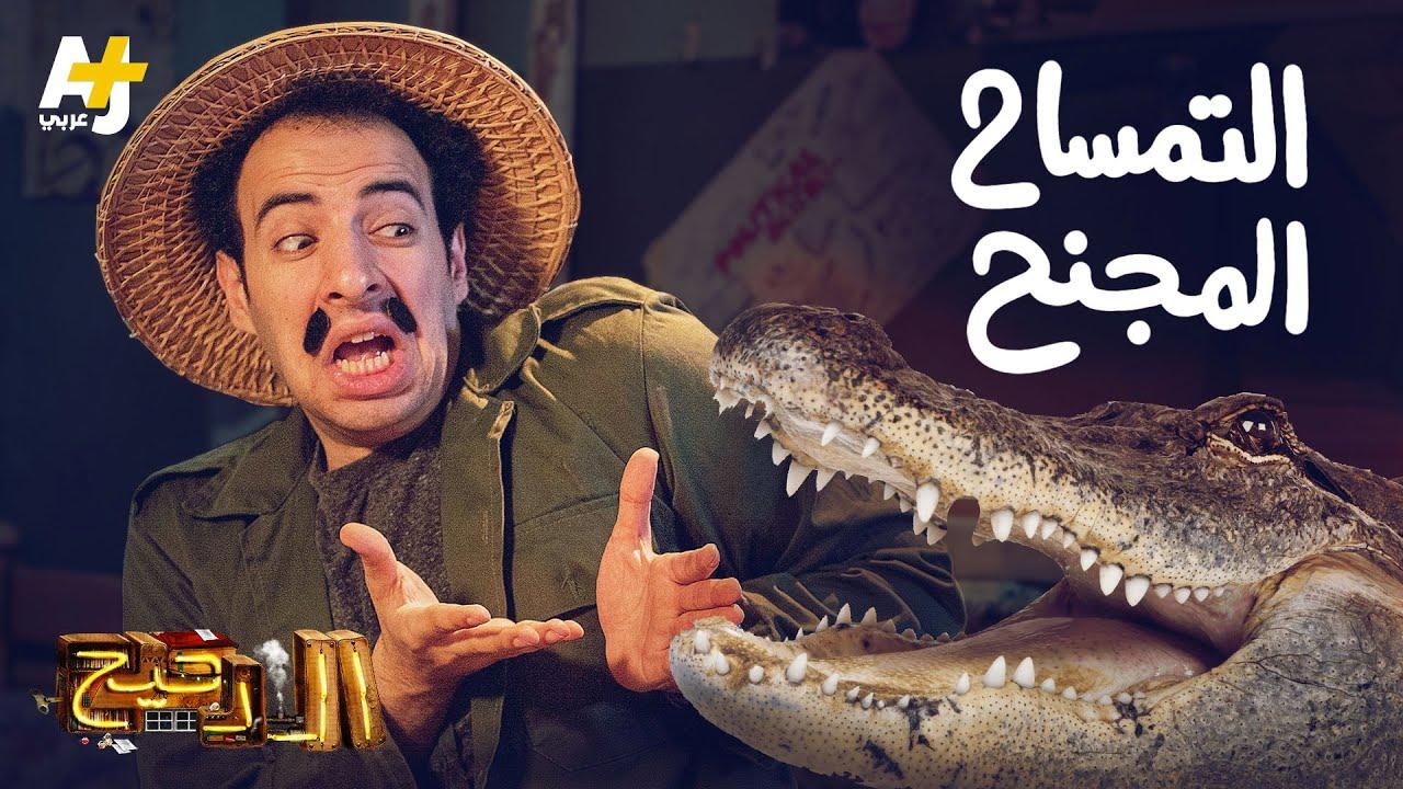 الدحيح - التمساح المجنح