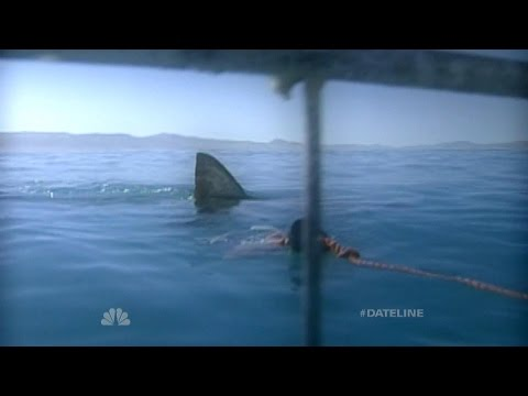 Dateline Survivor: Jaws!