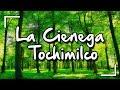 Video de Tochimilco