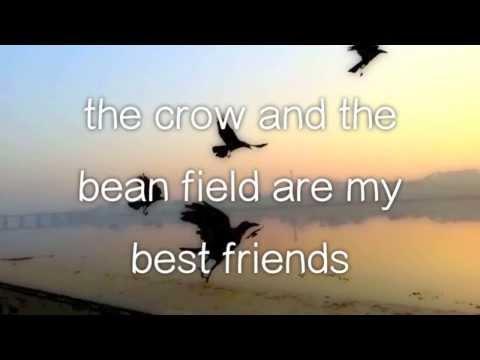 Owl City - Honey and the Bee (Lyric Video)