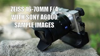 Zeiss 16-70mm f/4 Lens on the Sony A6000 (Sample Images)