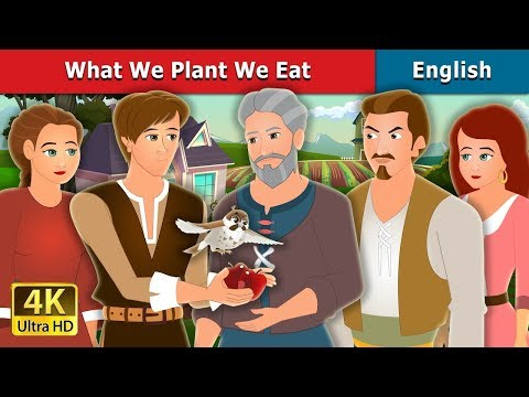 What We Plant We Eat Story In English | Stories For Teenagers | English Fairy Tales