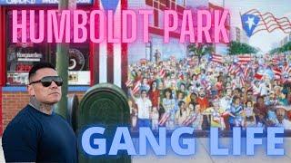 CHICAGO GANGS | MANIAC LATIN DISCIPLES | HUMBOLDT PARK