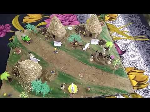 3d Model of Indian village