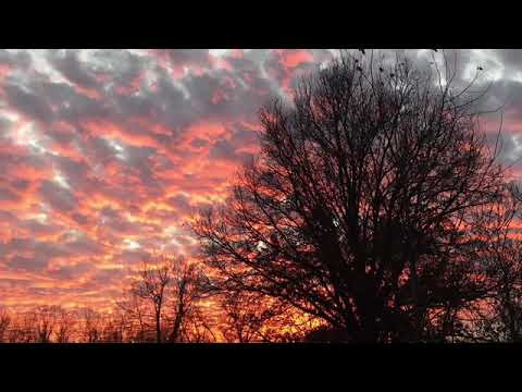 To Build A Home Cinematic Orchestra Slow Instrumental Youtube