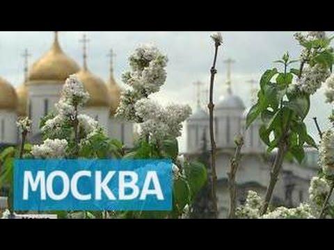 Московский Кремль Википедия