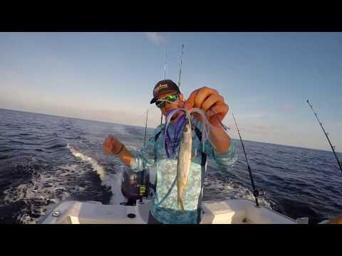 Go Pro Charleston Offshore Fishing - June 3, 2017