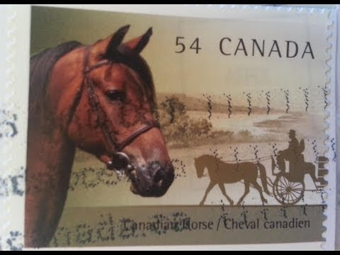 Canadian Stamp Collector - My Collection Part 8