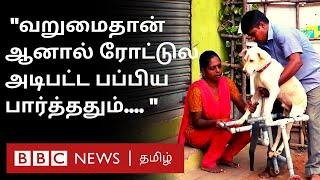 ரத்தத்தில் கிடந்த பப்பியை பார்த்து துடிதுடித்த தம்பதி | Wheel chair | Dog | Tamil Couple