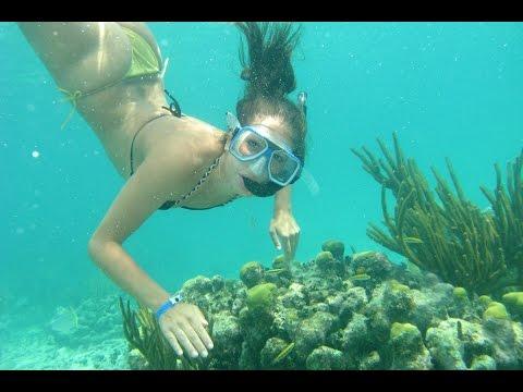 شاهد-متعة-الغوص-فى-مرسى-علم---see-pleasure-snorkeling-in-marsa-alam