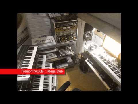 TremorTryOuts - Mega Dub Techno [ TR-909, Juno 106 ]