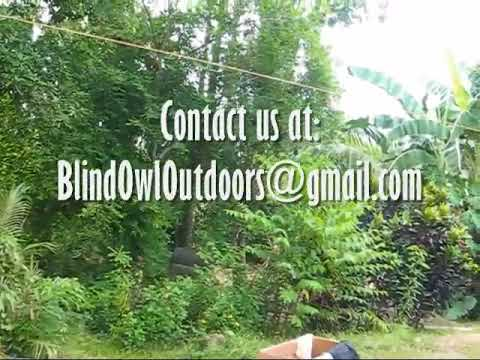 Short Report On Recent Law Changes A BlindOwl Outdoors Expat Philippines Foreigner Lifestyles Video