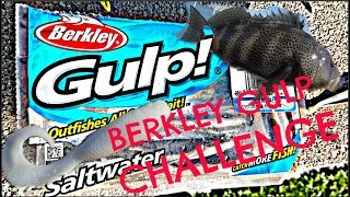 Berkley Bait CHALLENGE - San Diego Fishing for SPOTTIES
