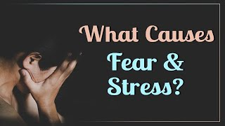 What Causes Fear and Stress?