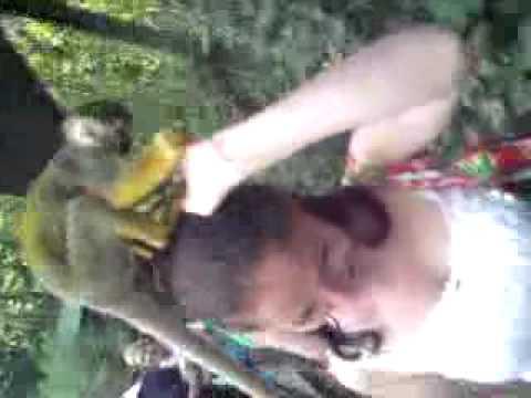 Affen frau - YouTube