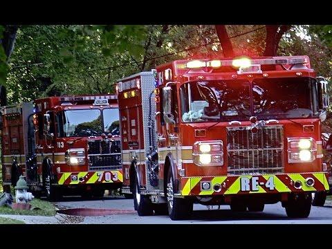 Пожарные машины Спецтехника Изучаем транспорт Мультики про машинки для детей