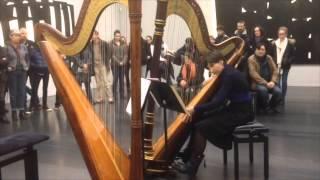 harpes au musee 0401