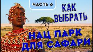Как выбрать парк для сафари в Танзании Обзор национальных парков