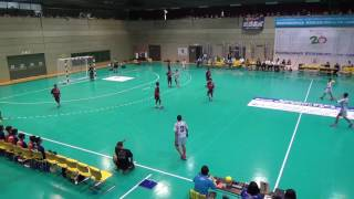 2017年 第30回全国小学生ハンドボール記念大会 男子決勝 桃園HBCvs小金井HBC