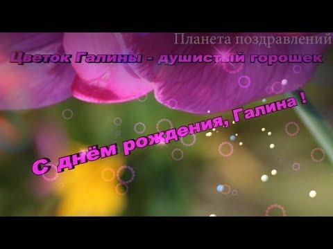 С днём рождения, Галина! Поздравления с днём рождения по именам