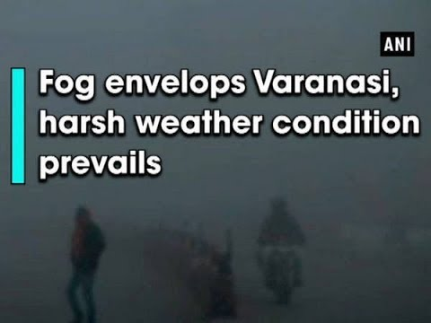 Fog envelops Varanasi, harsh weather condition prevails - Uttar Pradesh News