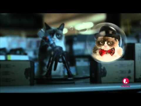 Grumpy Cat Movie  Paintball