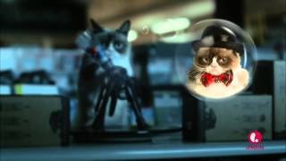 Grumpy Cat Movie - Paintball Scene