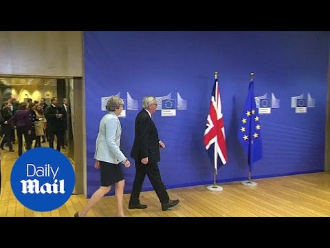 Theresa May arrives at the European Commission before dawn on Friday - Daily Mail