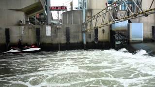 長良川河口堰 水位調整ノーカット
