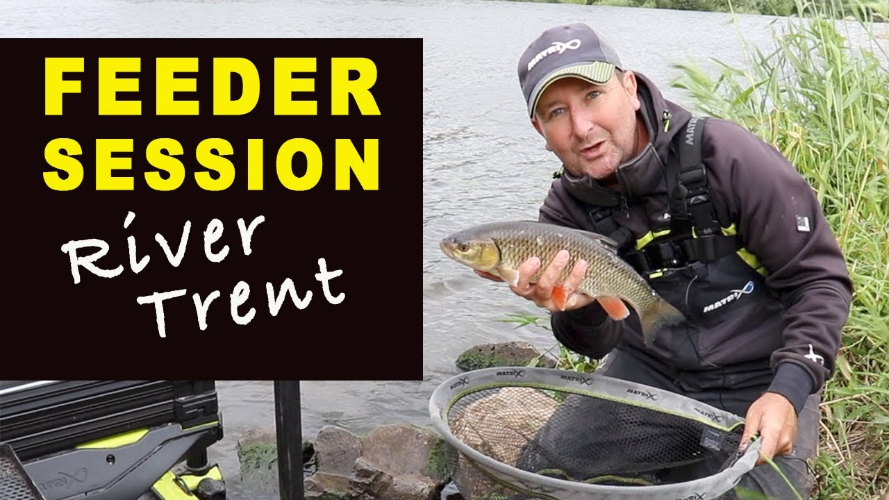 FEEDER FISHING Session River TRENT - Match Fishing Videos July 2020