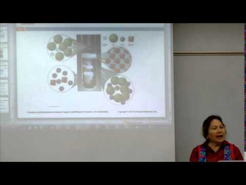 Broward College North Campus - CHEM 1032 - Prof. Cockroft Chapter 5 Lecture