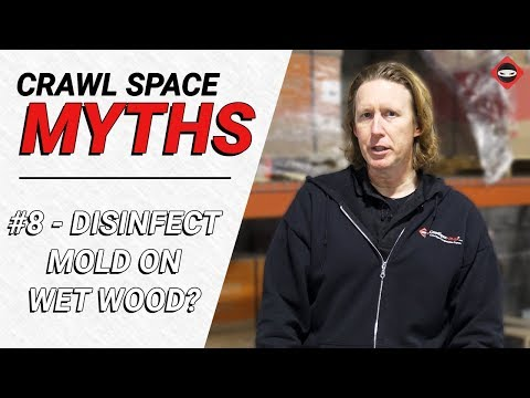 Crawl Space Myth #8 - Disinfecting Mold on Wet Wood?