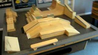 Worlds Largest Fingerboard Collection Park 3