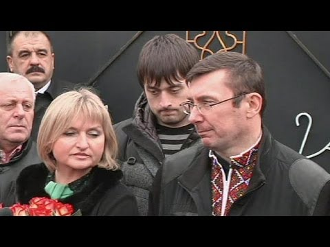 Allies of Ukraine ex-PM Tymoshenko pardoned and released from jail