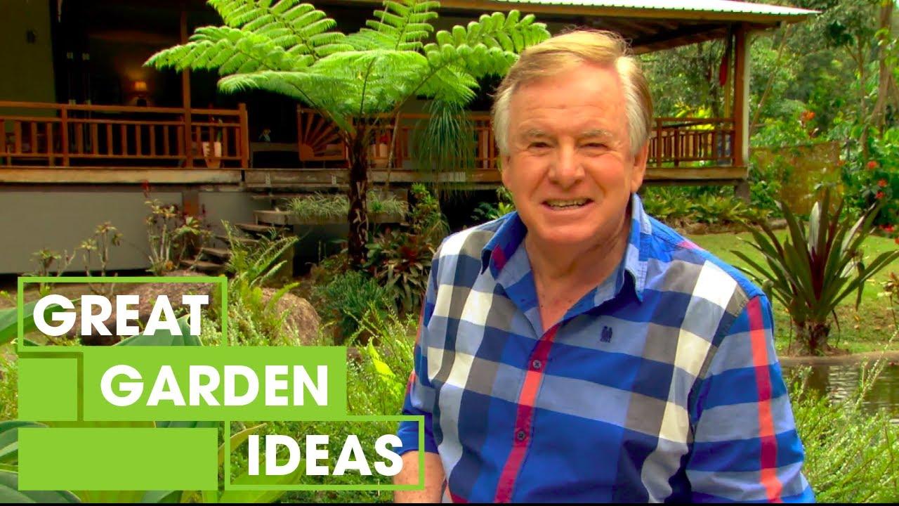 Diy Rainforest Garden Inspiration Gardening Great Home Ideas