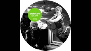 Bambook - Analogon
