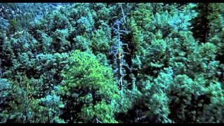 E.T. L'Extra-Terrestre (VF) - Bande Annonce
