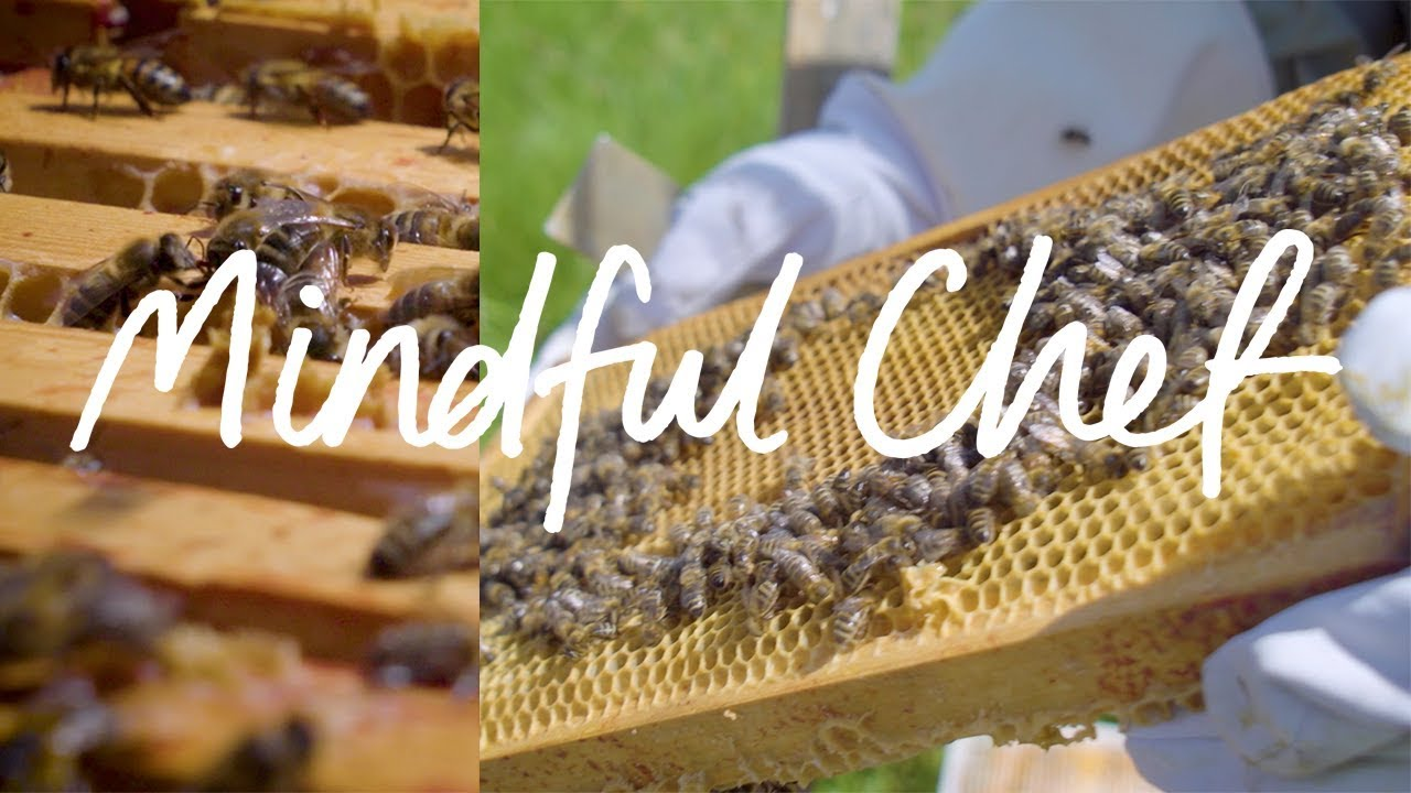 Hilltop Honey our sweetest supplier at Mindful Chef