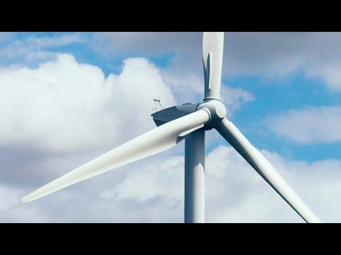 Renewable energy 'creates more pollutants than fossil fuel': Bernardi